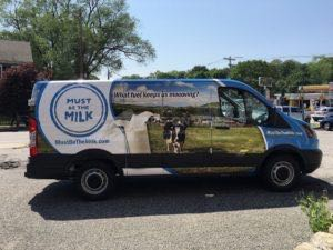 Van Wrap Graphics Dairy Milk Transit MILK4