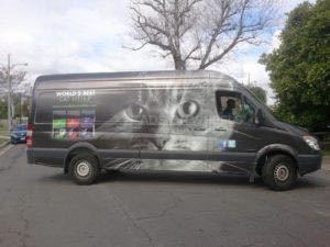 Van Wrap Graphics Pet Sprinter KNG2